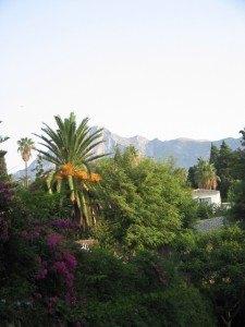バルコニーからの景色。マドリッドには山がほとんどないので、こういう景色だけで癒されます。