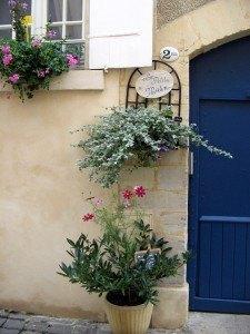 さり気ない花々と青いドアのコントラスト。