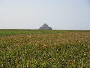 麦畑の向こうに見えるのも幻想的。