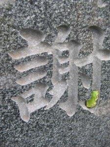 私が行く度に、お墓にカエルちゃんがいました。
