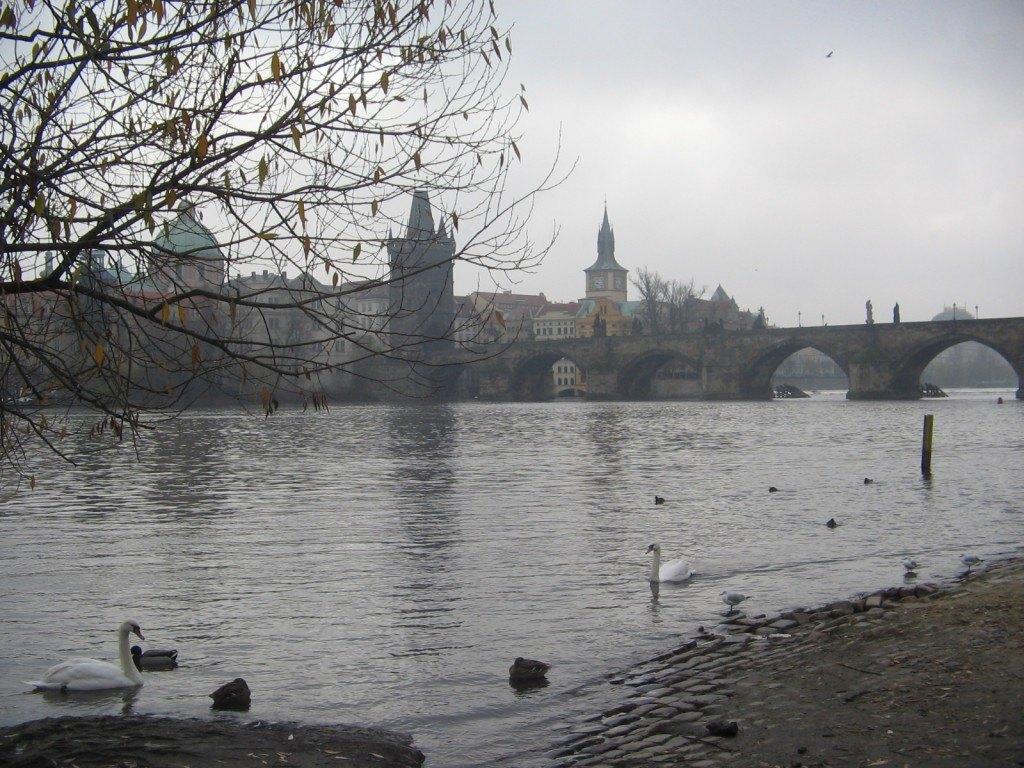 川の流れと初冬の寒さが印象的な旅でした。