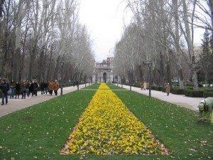 Retiroは冬でもお花が植えられきちんと手入れがされています。