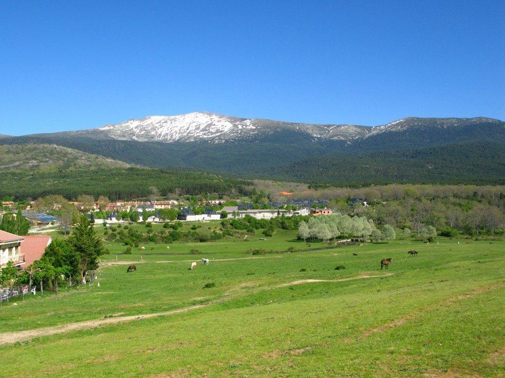 バルサインののどかな牧場の風景