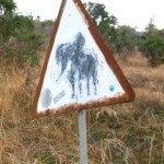 象飛び出し注意の標識
