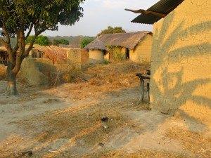 タンザニアの村では、このように建物と土の色が同じ場所がたくさんありました。
