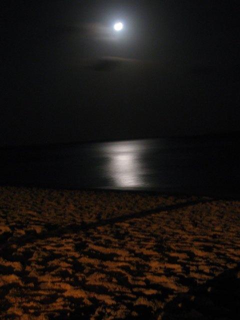 タンザニアでの最後の夜は、お月様を見ながらの浜辺での夕食。この美しさは忘れられません。