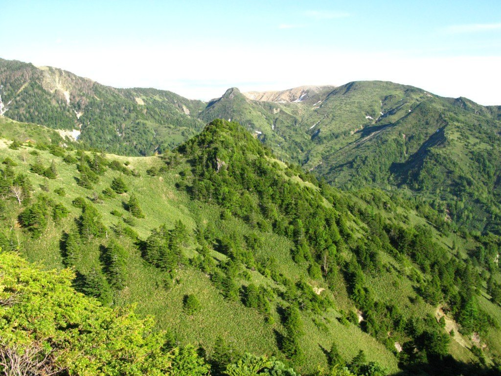 草津の温泉に行く途中の山道。緑の美しさは格別です。