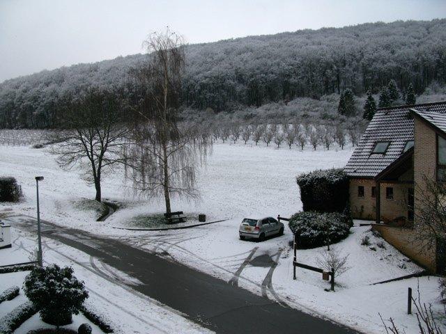 家から見る雪景色。