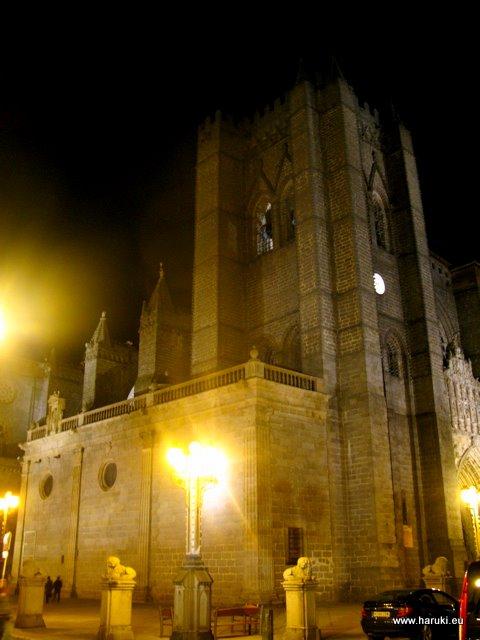 夜の大聖堂。ローマ様式とゴシック様式の混ざった、スペインでも一番古い大聖堂の一つだそうです。