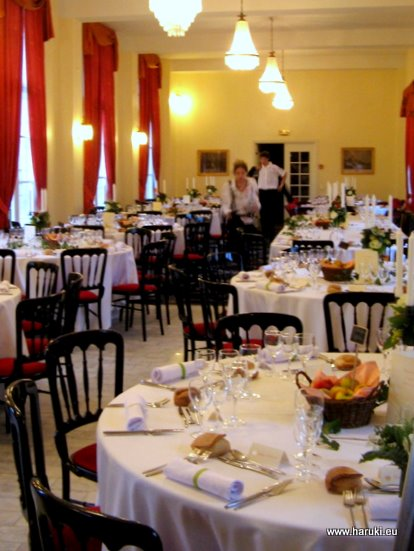 フランスの結婚式に行った時の披露宴会場。伝統ある落ち着いた雰囲気の場所でした。