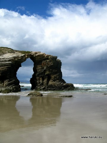 自然の造形美に感嘆・・・。