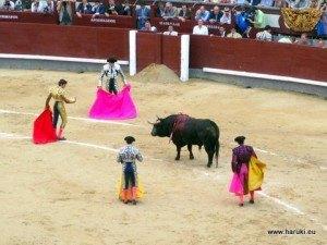 セバスティアン・カステーリャの闘牛