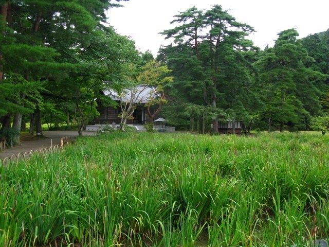 毛越寺の浄土庭園周辺。