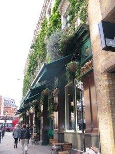 パブの外観。この緑の美しさはイギリスだなぁ、なんて思ってしまいました。