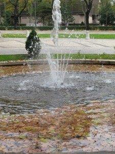 プラド美術館近くの噴水。透明な水と落ち葉のコントラストが好きです。