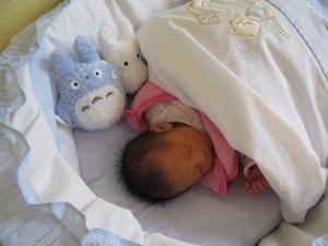 寝ている娘。誕生祝にいただいたトトロと一緒に。