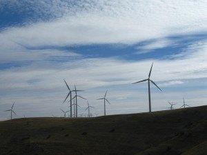広い平原に立つたくさんの風車