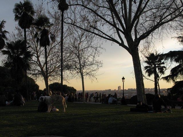 公園の様子。ここから見える夕陽は本当にキレイです。
