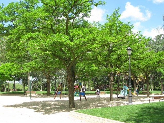 木陰ができるお陰で、ある程度の暑さまでは快適に過ごせます。
