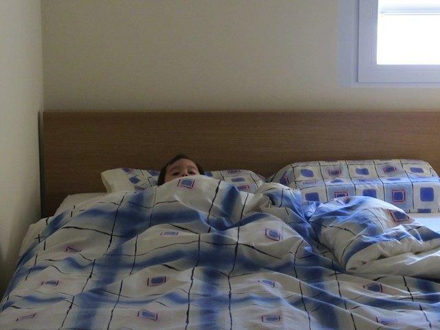 最近は、おばあちゃまがいないうちにベッドに上ってスタンバイ。