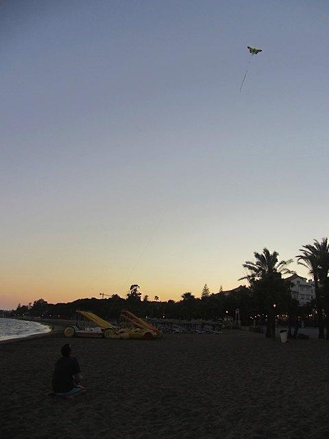 海岸で凧揚げ。