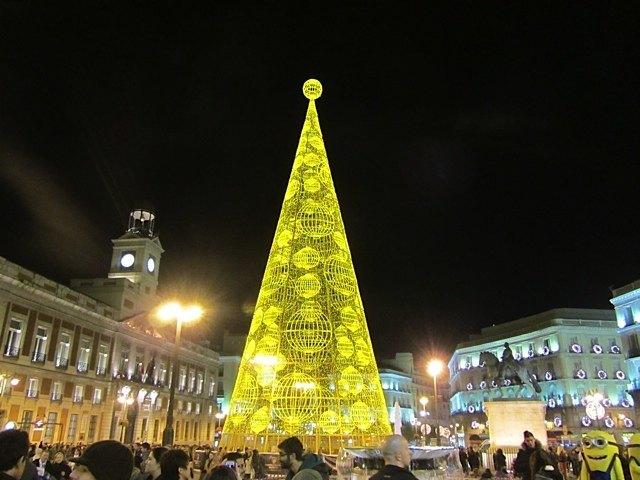 ソルのクリスマスツリー。2008年に書いたツリーを再利用したものと思われます。