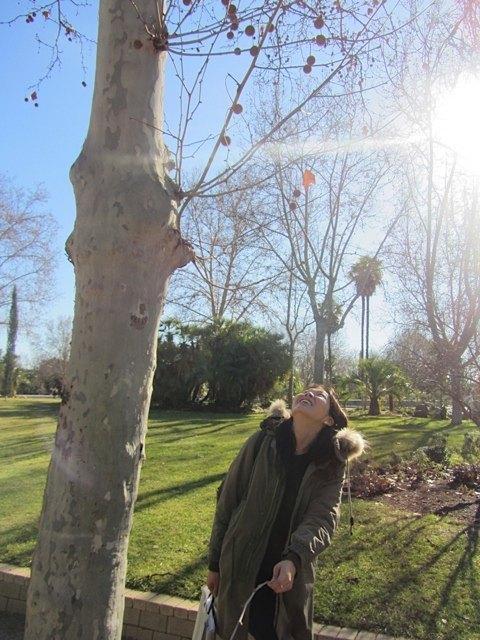 公園で、上にある木の実を取ろうとする私を助けてくれました。ありがとう!