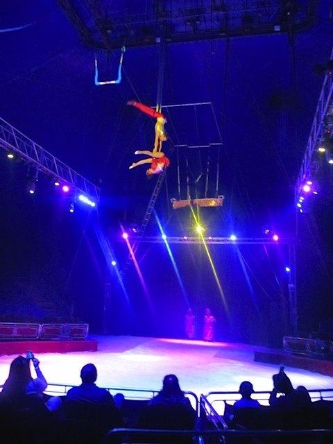 幻想的なサーカスでした。