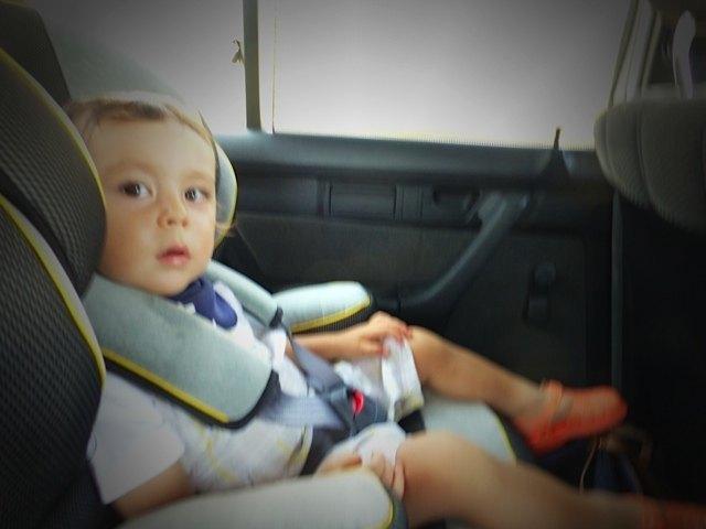車での長旅を終えて。良い子にしていてくれたようです。