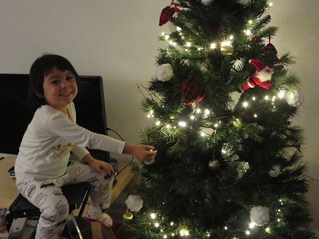 飾り付けは娘も手伝ってくれました。今年は何でも投げる息子のことを考え、飾りは投げても壊れないフエルト製がメインです。